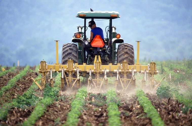 Plowing destroys the soil structure, kills microbes, and creates compaction zones transforming living soil into dirt.