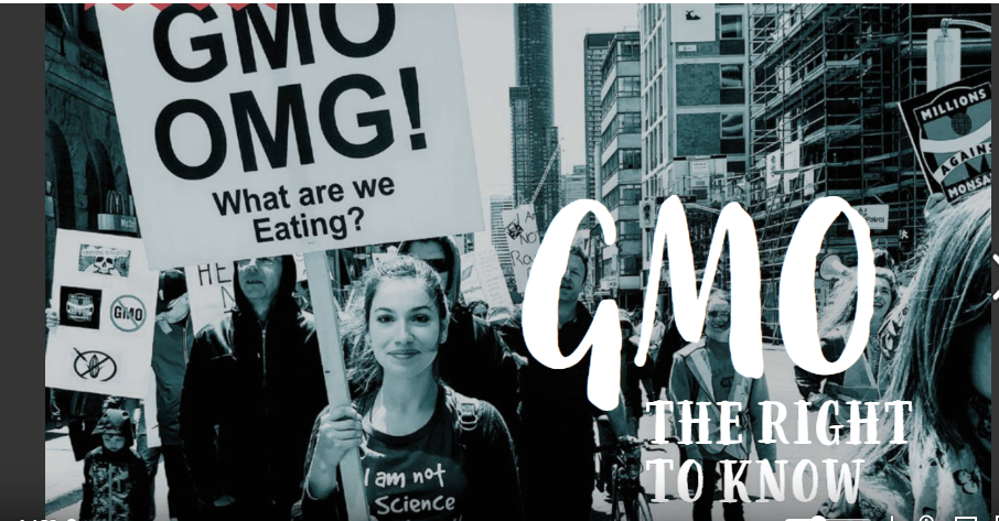 Hear Youth Activist Rachel Parent talk on The Dr. Theresa Nicassio Show about GMO Labelling & Kids Right To Know what's in their food.