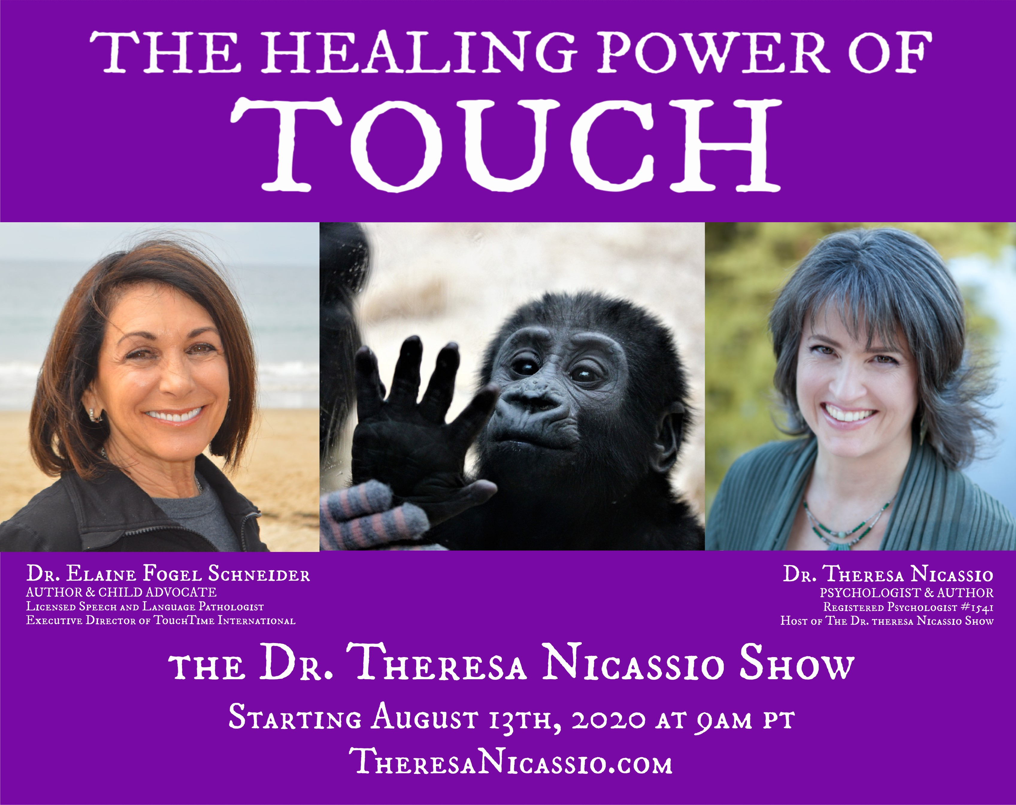 The Healing Power of Touch with Dr. Elaine Fogel Schneider on The Dr. Theresa Nicassio Show on HealthyLife.net - All Positive Talk Radio